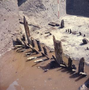 Paaltjes die bij de opgraving tevoorschijn kwamen